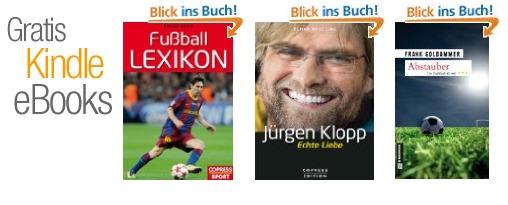 em 2012 ebooks
