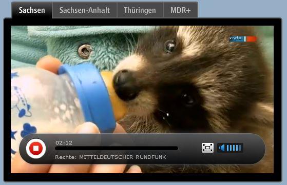 mdr-livestream