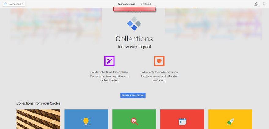 google plus collections leak
