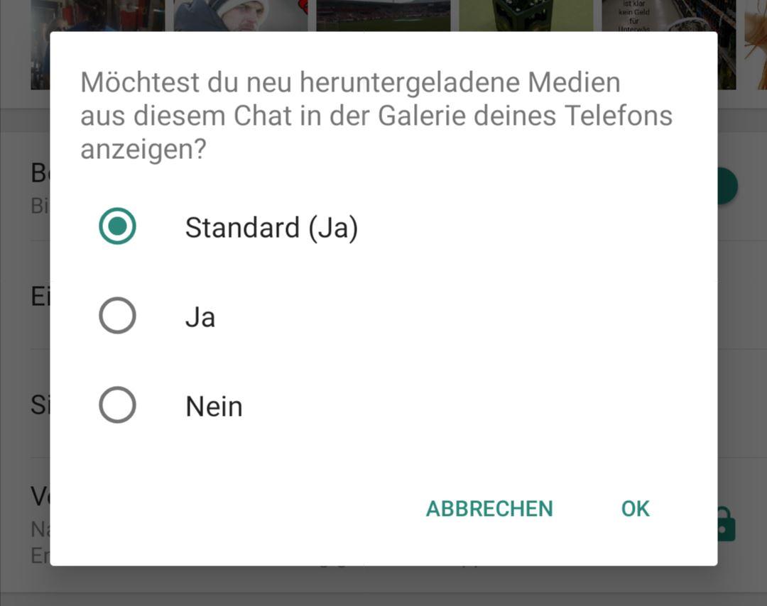 Sichtbarkeit der Medien WhatsApp